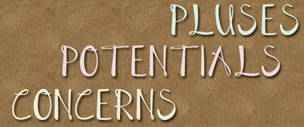 Pluses, Potentials and Concerns